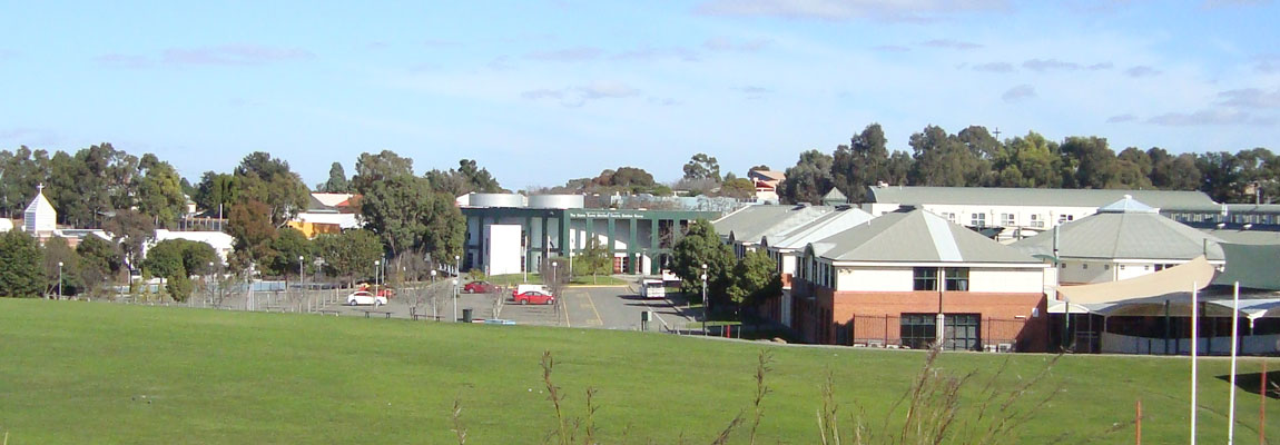 photo of school from top of oval